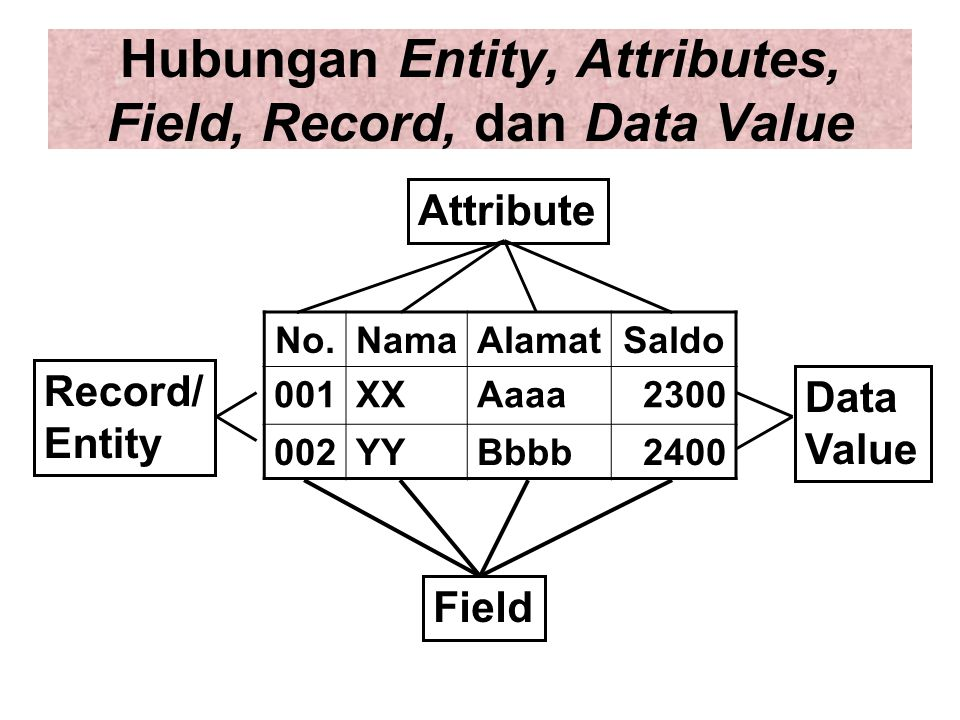 Hubungan Entity, Attributes, Field, Record, dan Data Value