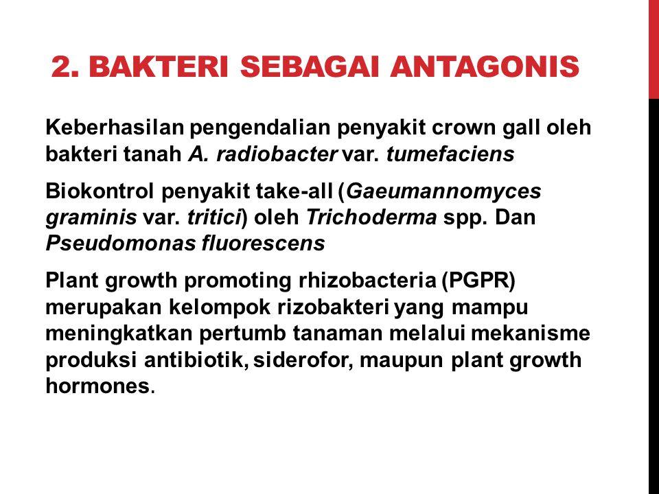 2. Bakteri sebagai antagonis