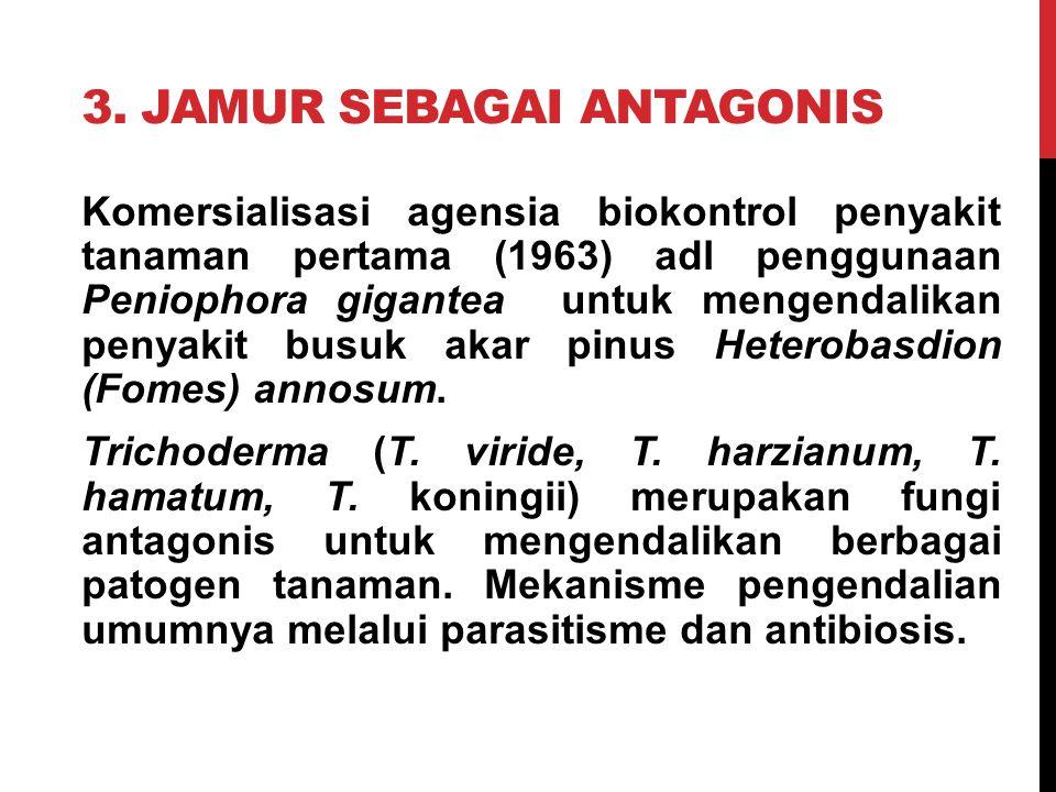 3. JAMUR sebagai antagonis