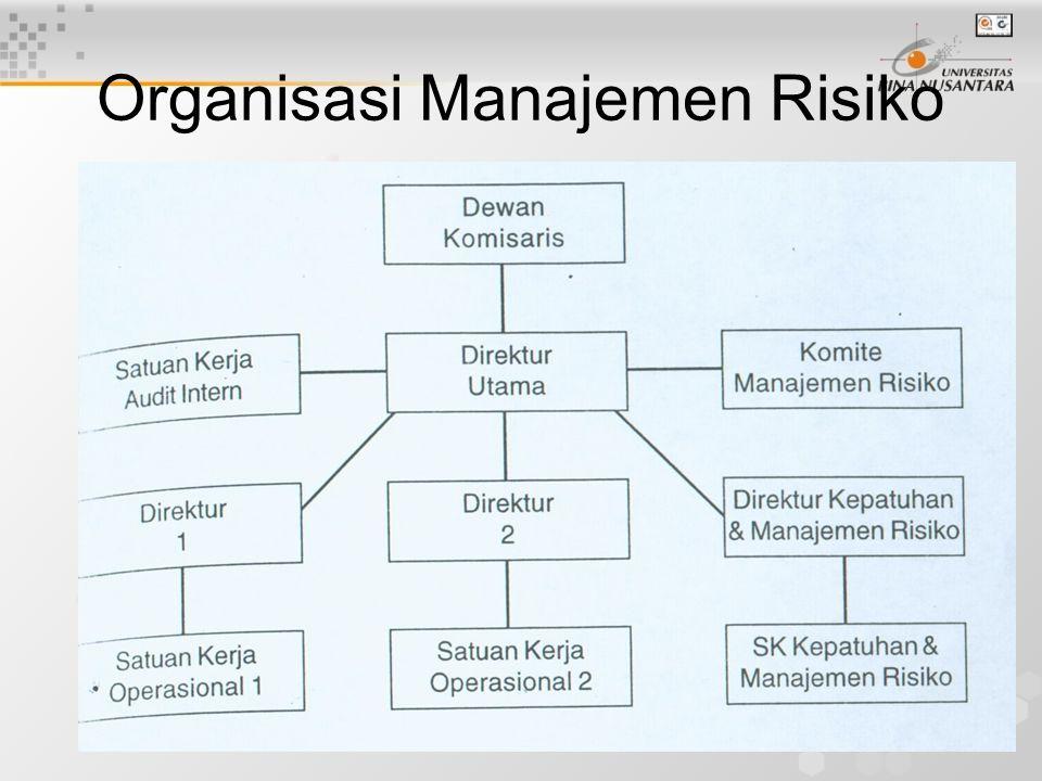 Organisasi Manajemen Risiko