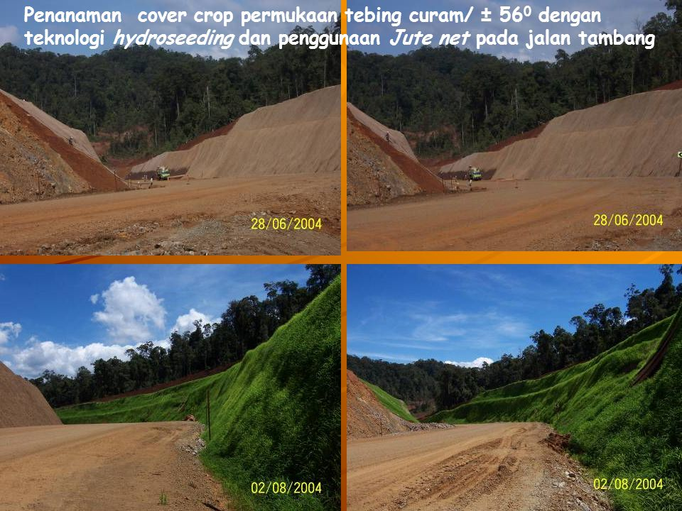 Penanaman cover crop permukaan tebing curam/ ± 560 dengan teknologi hydroseeding dan penggunaan Jute net pada jalan tambang