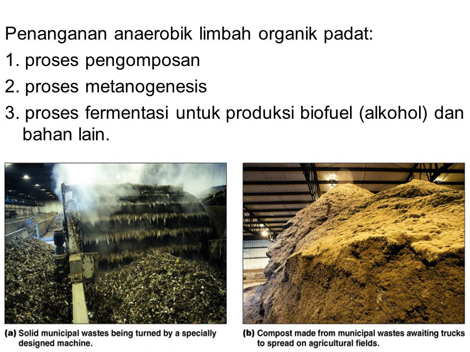 Penanganan anaerobik limbah organik padat: