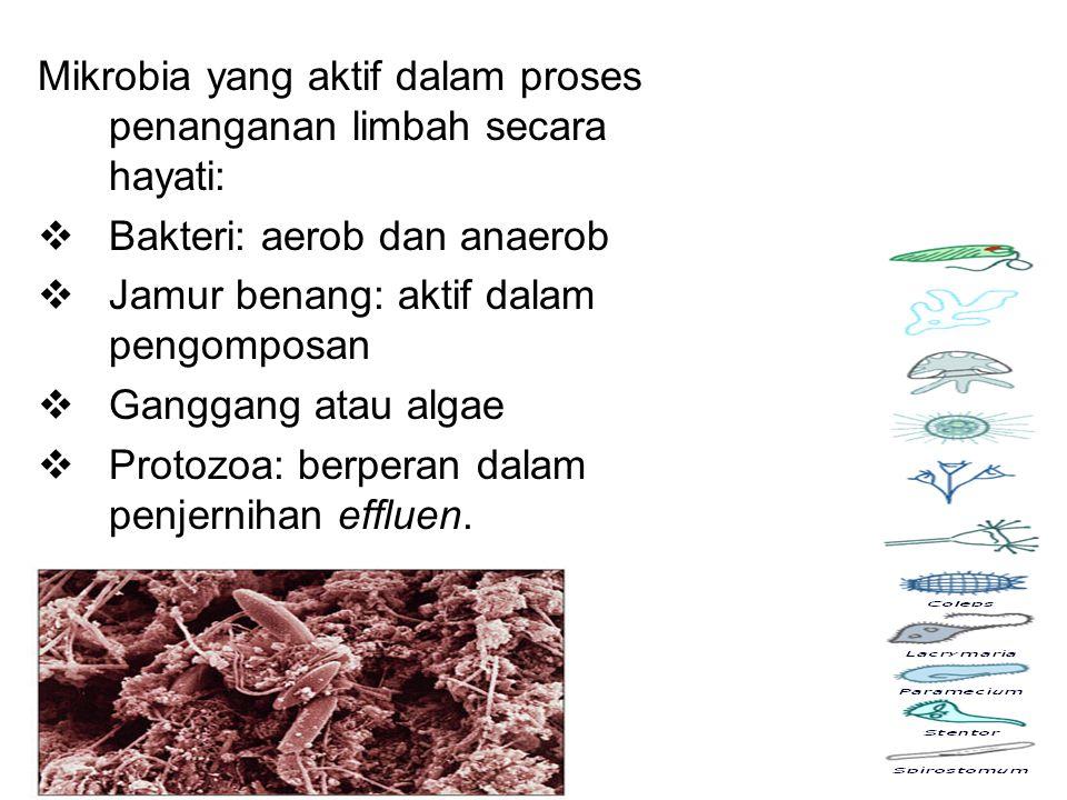 Mikrobia yang aktif dalam proses penanganan limbah secara hayati: