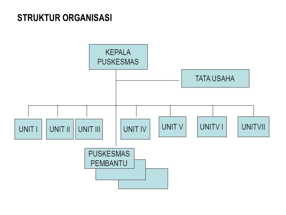 STRUKTUR ORGANISASI KEPALA PUSKESMAS TATA USAHA UNIT V UNITV I UNITVII