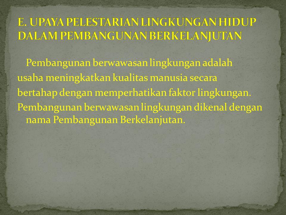 E. UPAYA PELESTARIAN LINGKUNGAN HIDUP DALAM PEMBANGUNAN BERKELANJUTAN