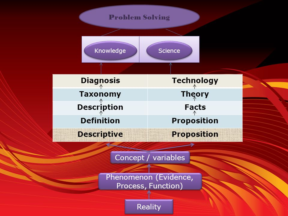 Phenomenon (Evidence, Process, Function)