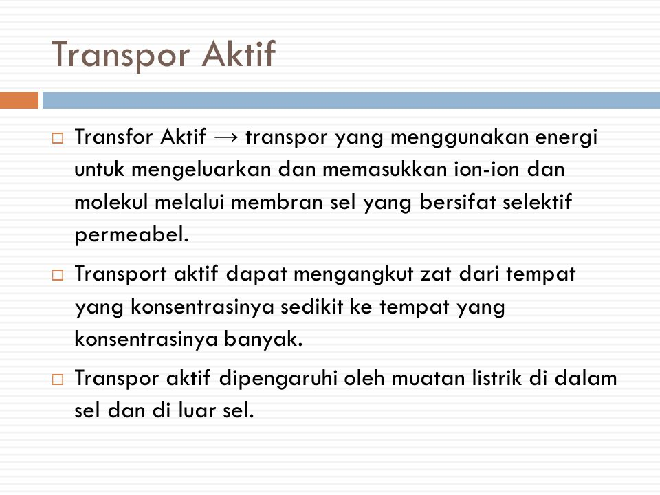 Transpor Aktif