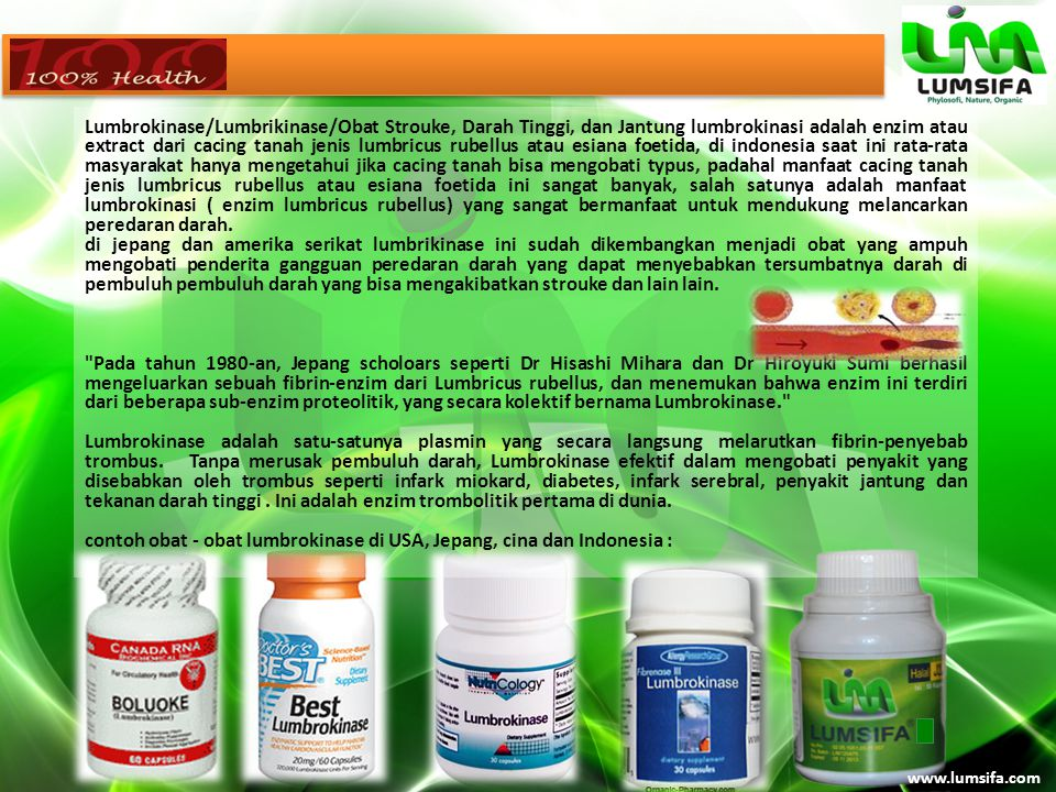 contoh obat - obat lumbrokinase di USA, Jepang, cina dan Indonesia :