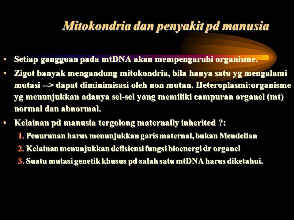 Mitokondria dan penyakit pd manusia