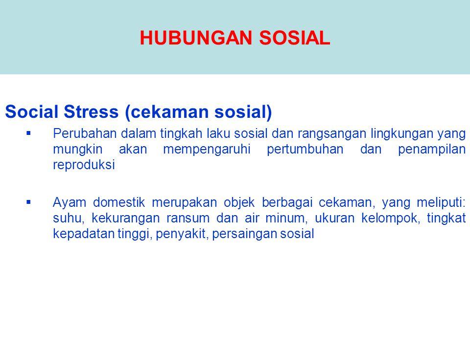 HUBUNGAN SOSIAL Social Stress (cekaman sosial)