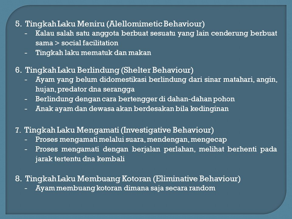 5. Tingkah Laku Meniru (Alellomimetic Behaviour)