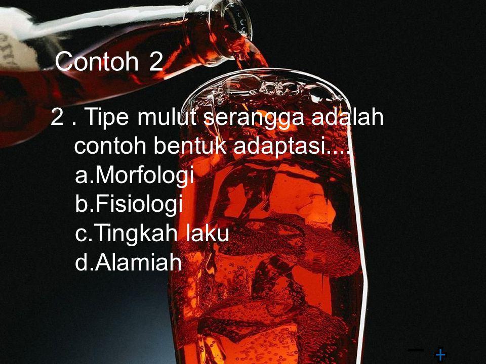 Contoh 2 2 . Tipe mulut serangga adalah contoh bentuk adaptasi....
