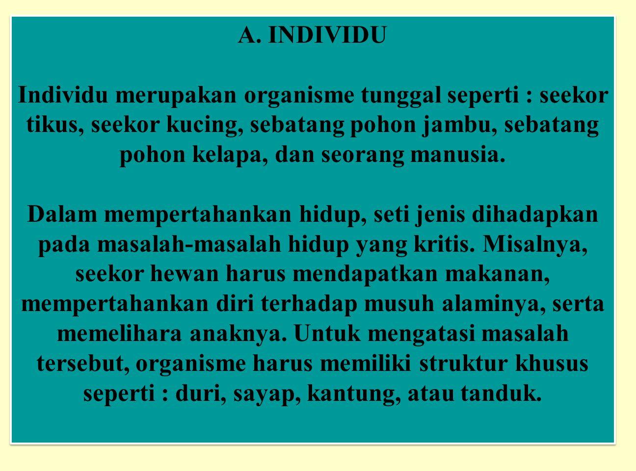 A. INDIVIDU