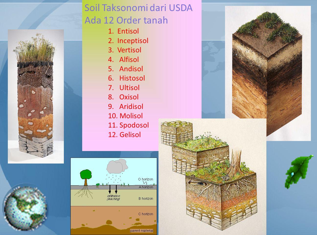 Soil Taksonomi dari USDA Ada 12 Order tanah