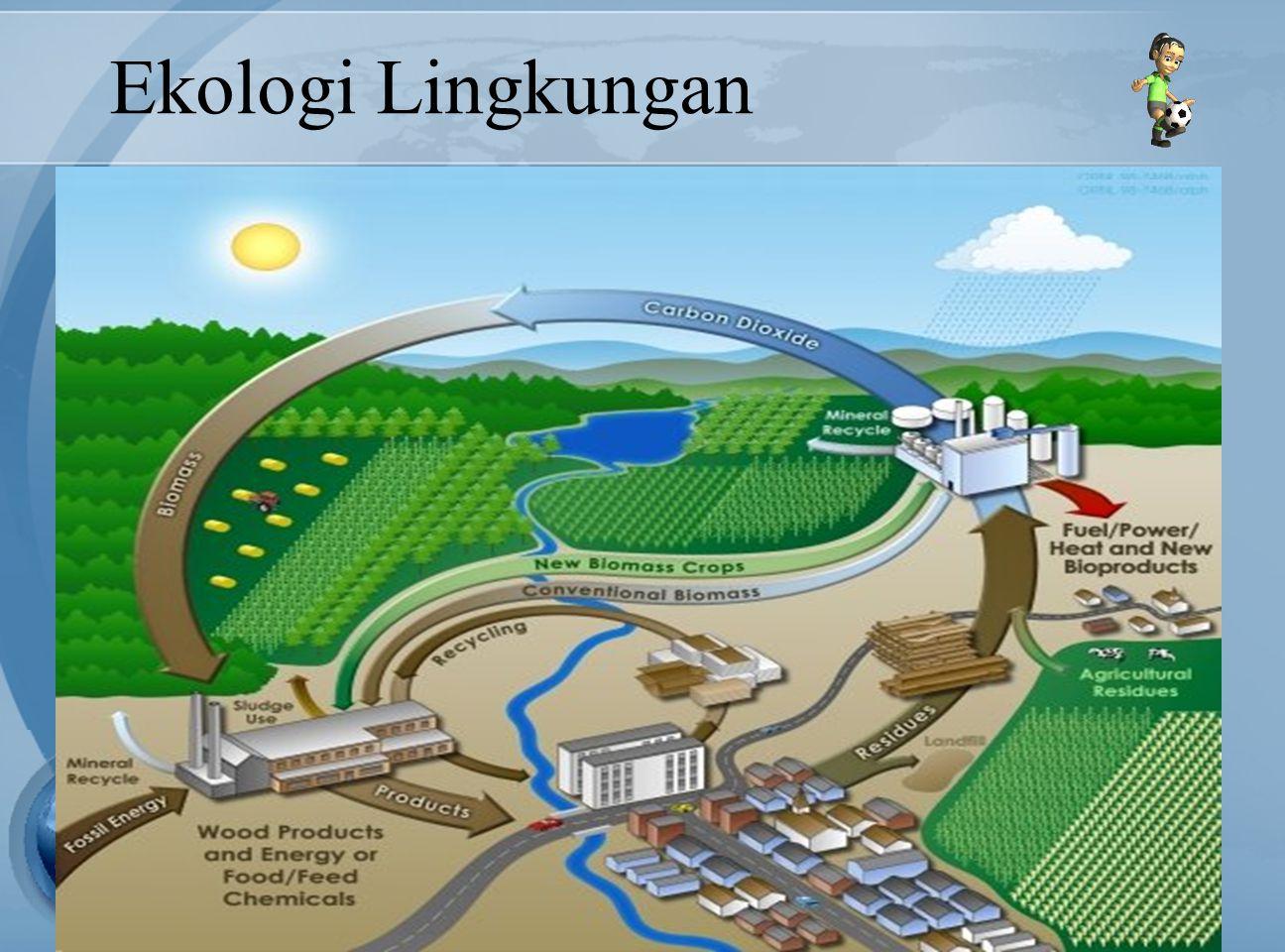 Ekologi Lingkungan