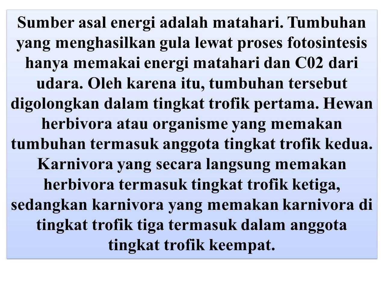 Sumber asal energi adalah matahari