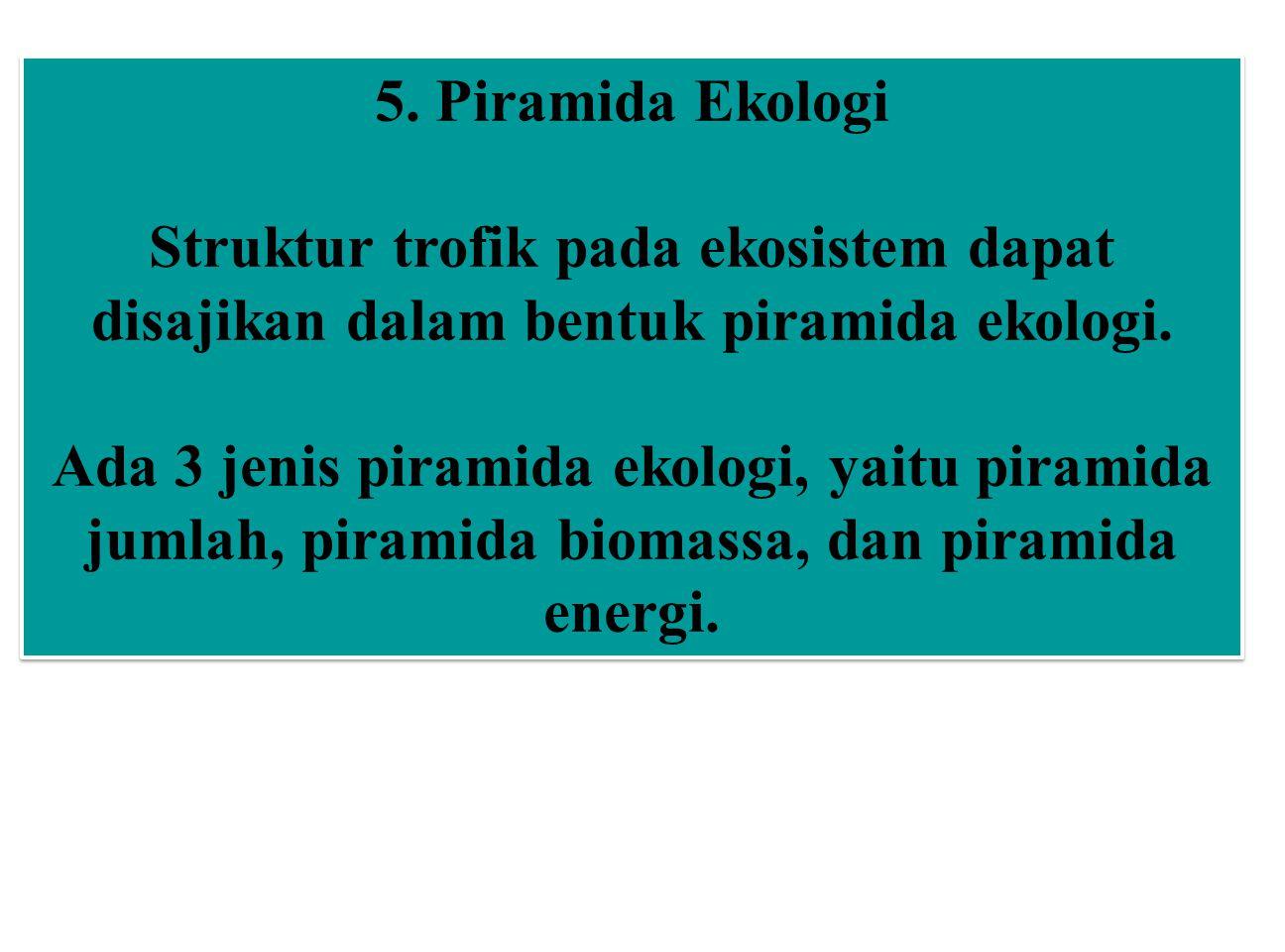 5. Piramida Ekologi Struktur trofik pada ekosistem dapat disajikan dalam bentuk piramida ekologi.