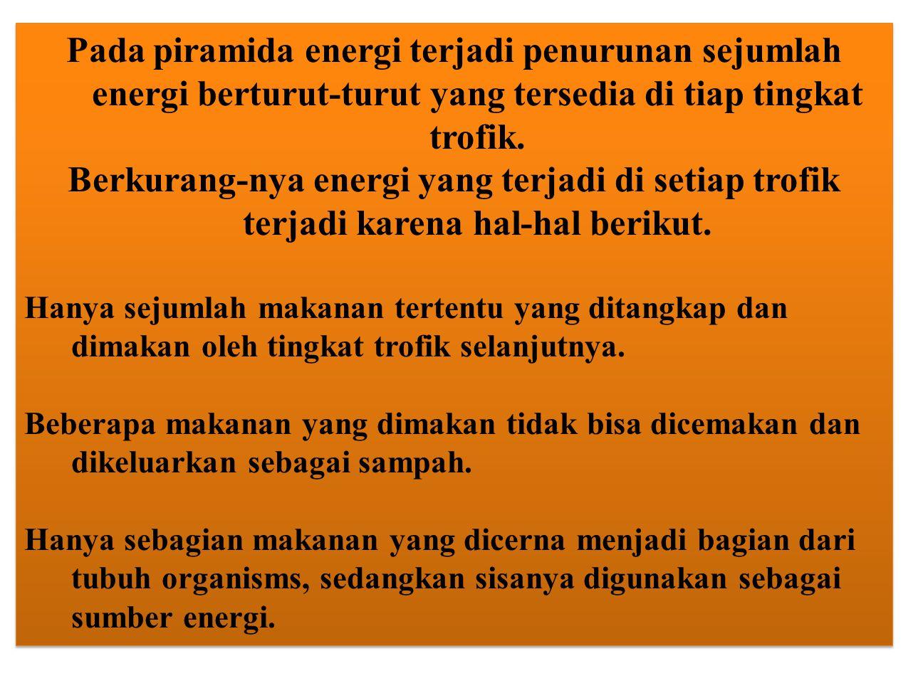 Pada piramida energi terjadi penurunan sejumlah energi berturut-turut yang tersedia di tiap tingkat trofik.