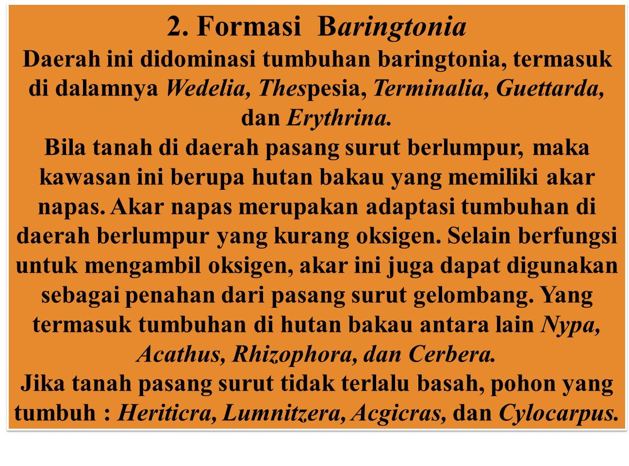 2. Formasi Baringtonia Daerah ini didominasi tumbuhan baringtonia, termasuk di dalamnya Wedelia, Thespesia, Terminalia, Guettarda, dan Erythrina.