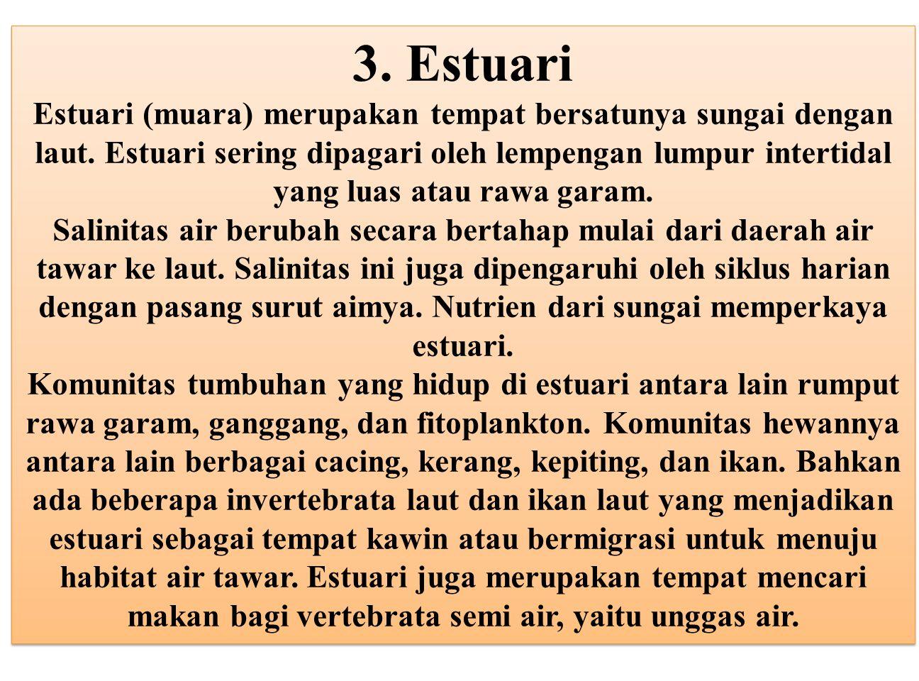 3. Estuari Estuari (muara) merupakan tempat bersatunya sungai dengan laut. Estuari sering dipagari oleh lempengan lumpur intertidal yang luas atau rawa garam.