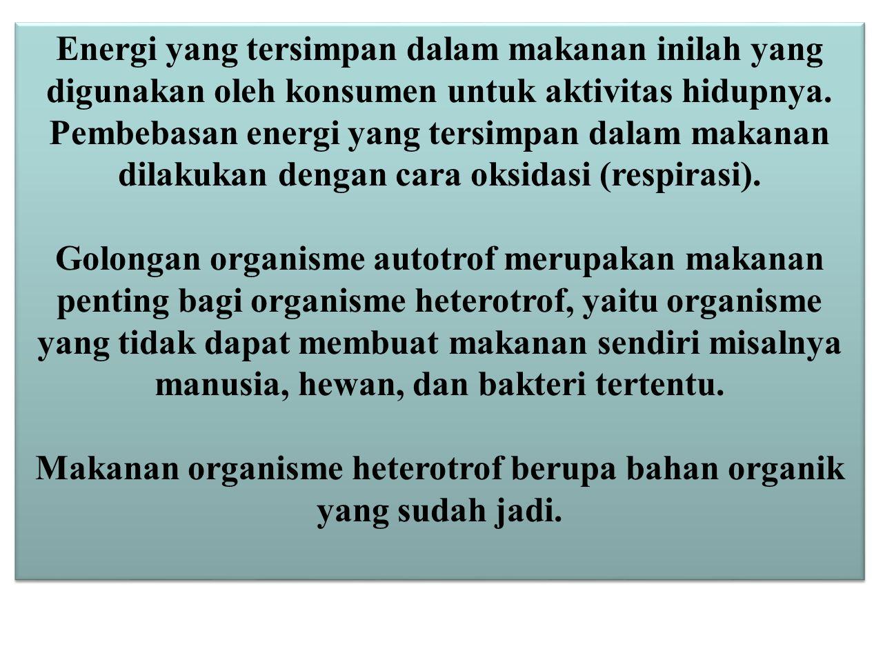 Makanan organisme heterotrof berupa bahan organik yang sudah jadi.
