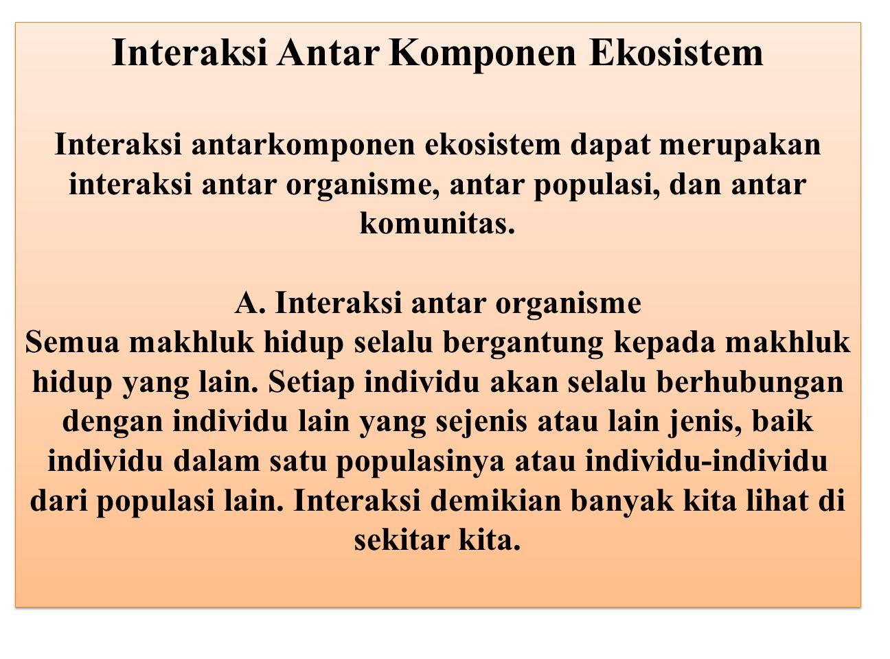 Interaksi Antar Komponen Ekosistem
