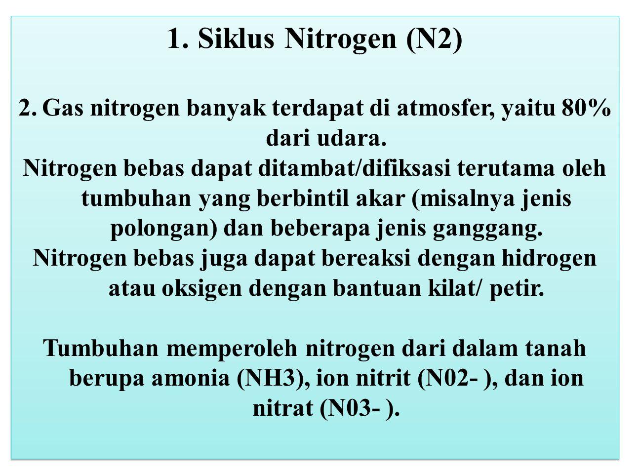 Gas nitrogen banyak terdapat di atmosfer, yaitu 80% dari udara.