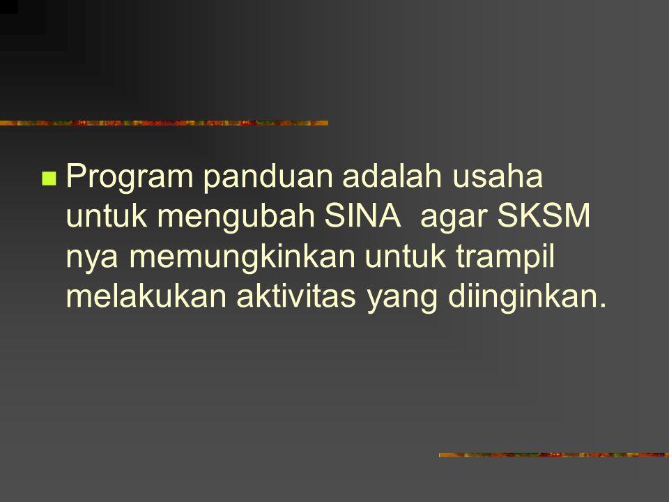 Program panduan adalah usaha untuk mengubah SINA agar SKSM nya memungkinkan untuk trampil melakukan aktivitas yang diinginkan.