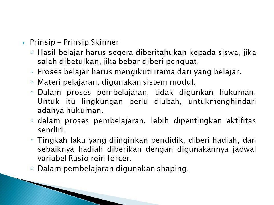 Prinsip – Prinsip Skinner