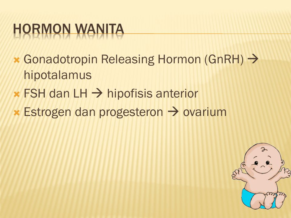 Hormon wanita Gonadotropin Releasing Hormon (GnRH)  hipotalamus