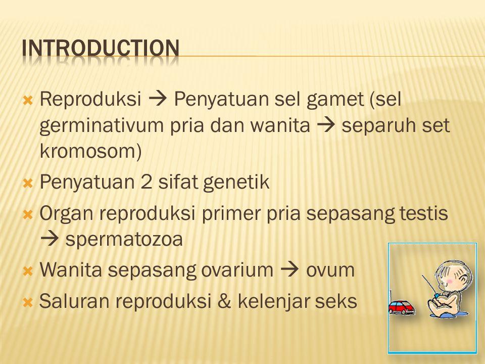 Introduction Reproduksi  Penyatuan sel gamet (sel germinativum pria dan wanita  separuh set kromosom)