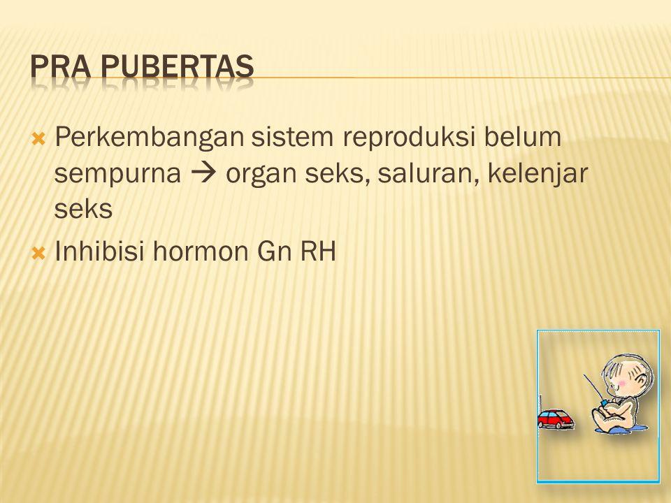 Pra pubertas Perkembangan sistem reproduksi belum sempurna  organ seks, saluran, kelenjar seks.