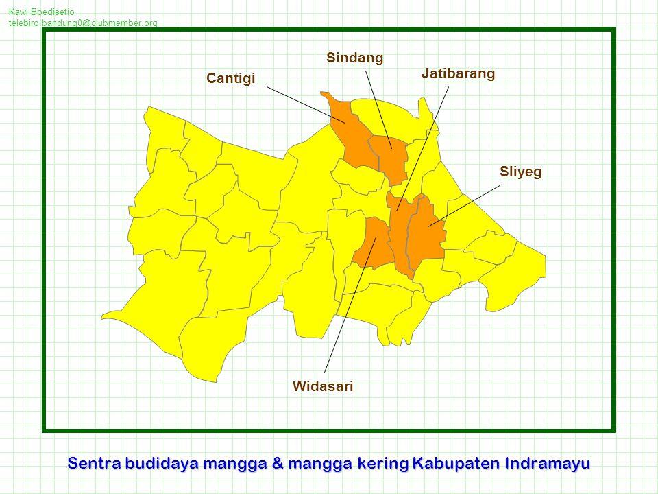 Sentra budidaya mangga & mangga kering Kabupaten Indramayu