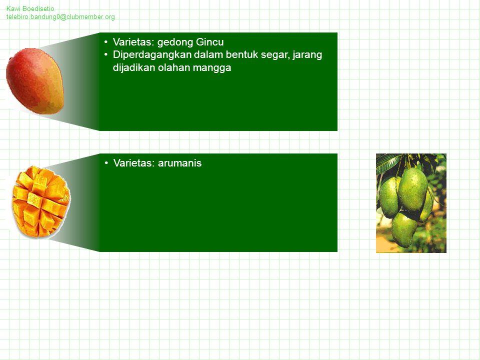 Varietas: gedong Gincu