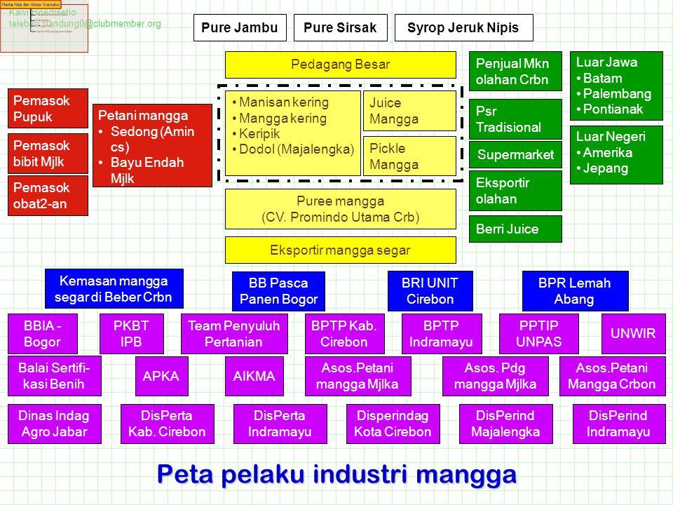 Peta pelaku industri mangga
