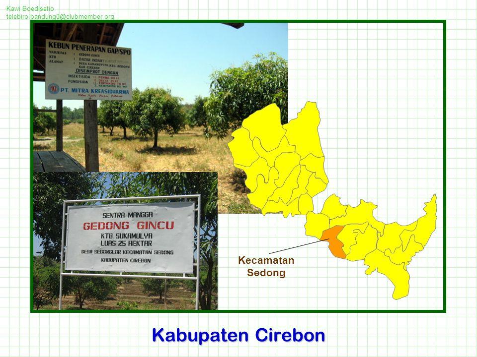Kabupaten Cirebon Kecamatan Sedong Kawi Boedisetio