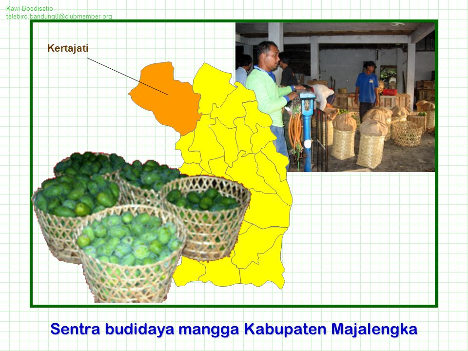 Sentra budidaya mangga Kabupaten Majalengka