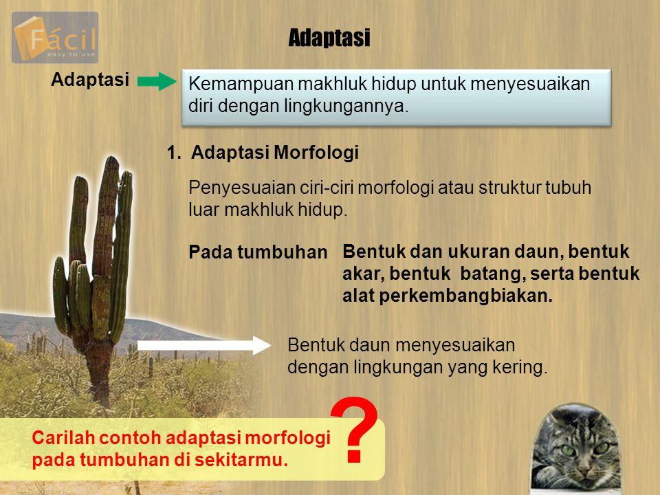 Adaptasi Adaptasi. Kemampuan makhluk hidup untuk menyesuaikan diri dengan lingkungannya. 1. Adaptasi Morfologi.