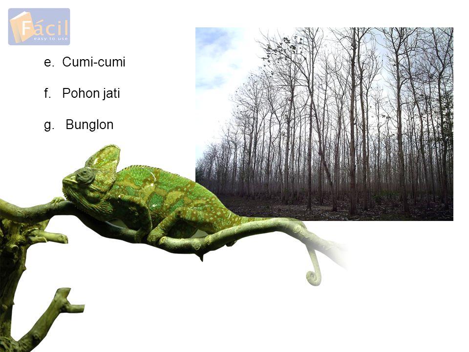 e. Cumi-cumi f. Pohon jati g. Bunglon