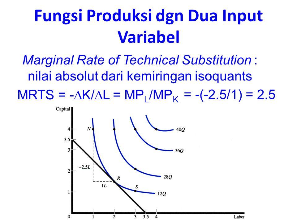 Fungsi Produksi dgn Dua Input Variabel