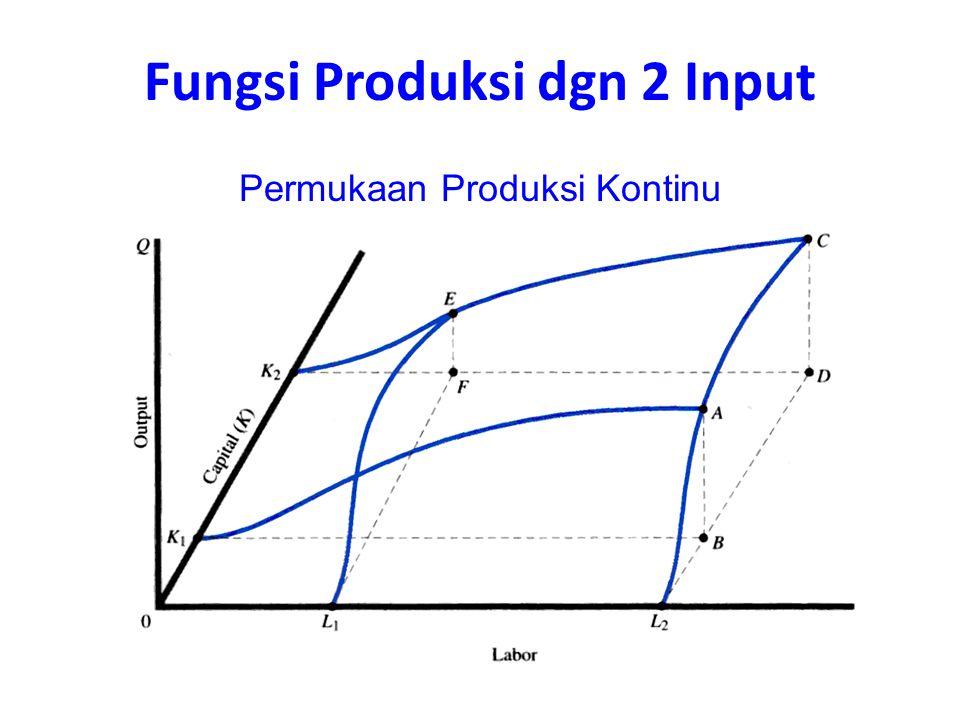 Fungsi Produksi dgn 2 Input