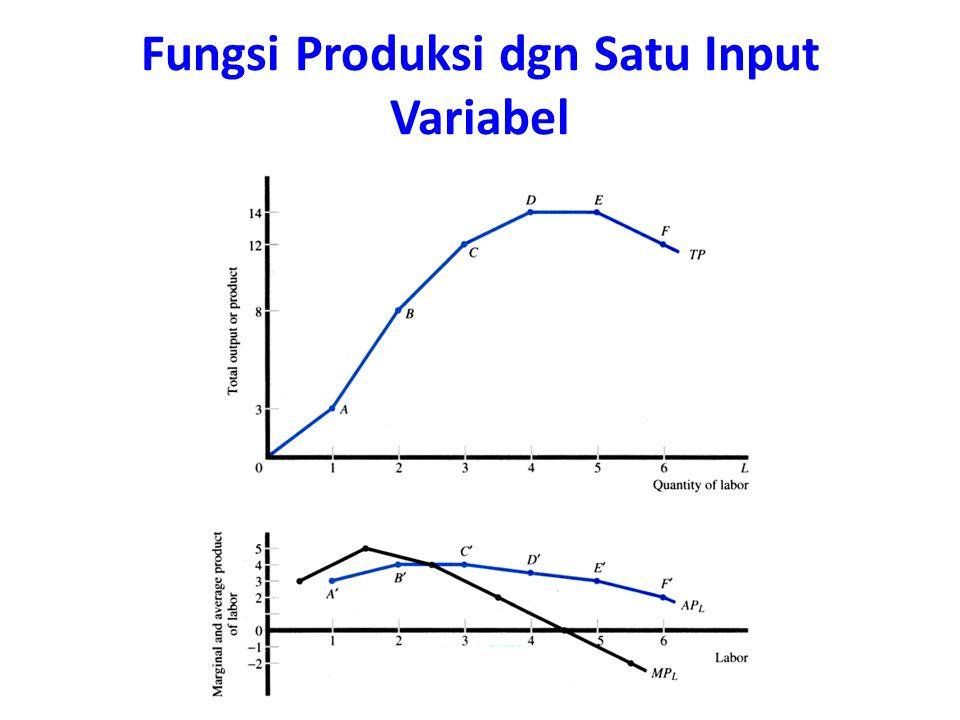 Fungsi Produksi dgn Satu Input Variabel