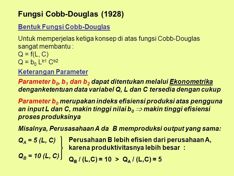 Fungsi Cobb-Douglas (1928)