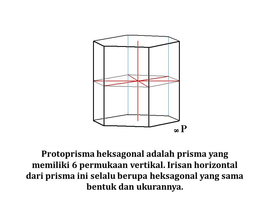 Protoprisma heksagonal adalah prisma yang memiliki 6 permukaan vertikal.