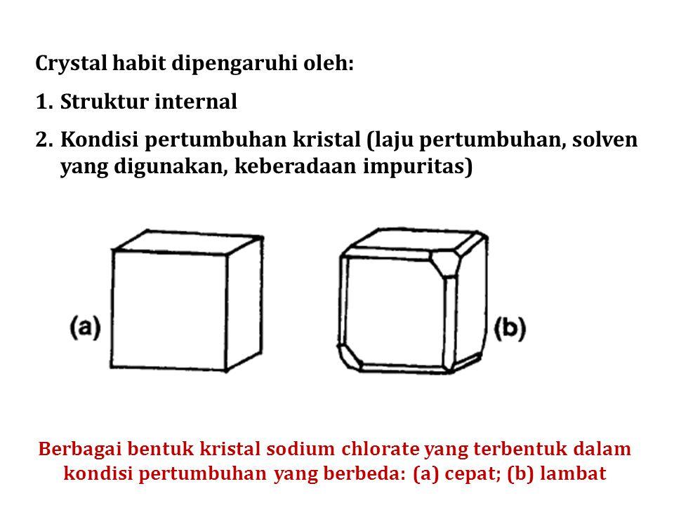 Crystal habit dipengaruhi oleh: Struktur internal