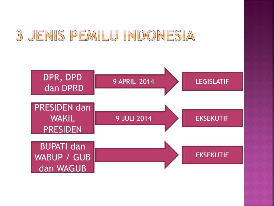 3 Jenis Pemilu Indonesia