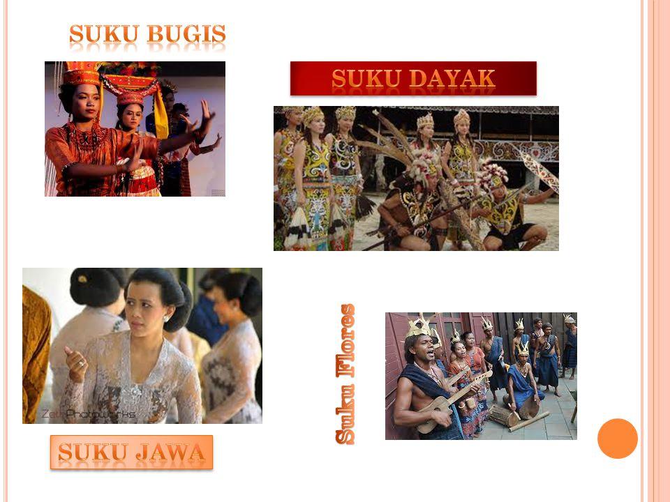 suku bugis Suku Dayak Suku Flores Suku Jawa