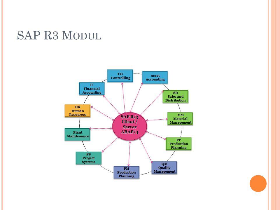 SAP R3 Modul