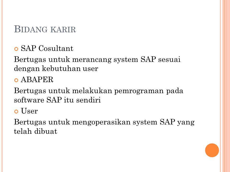 Bidang karir SAP Cosultant