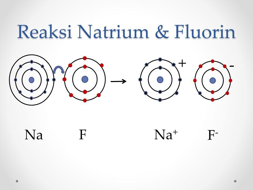 Reaksi Natrium & Fluorin